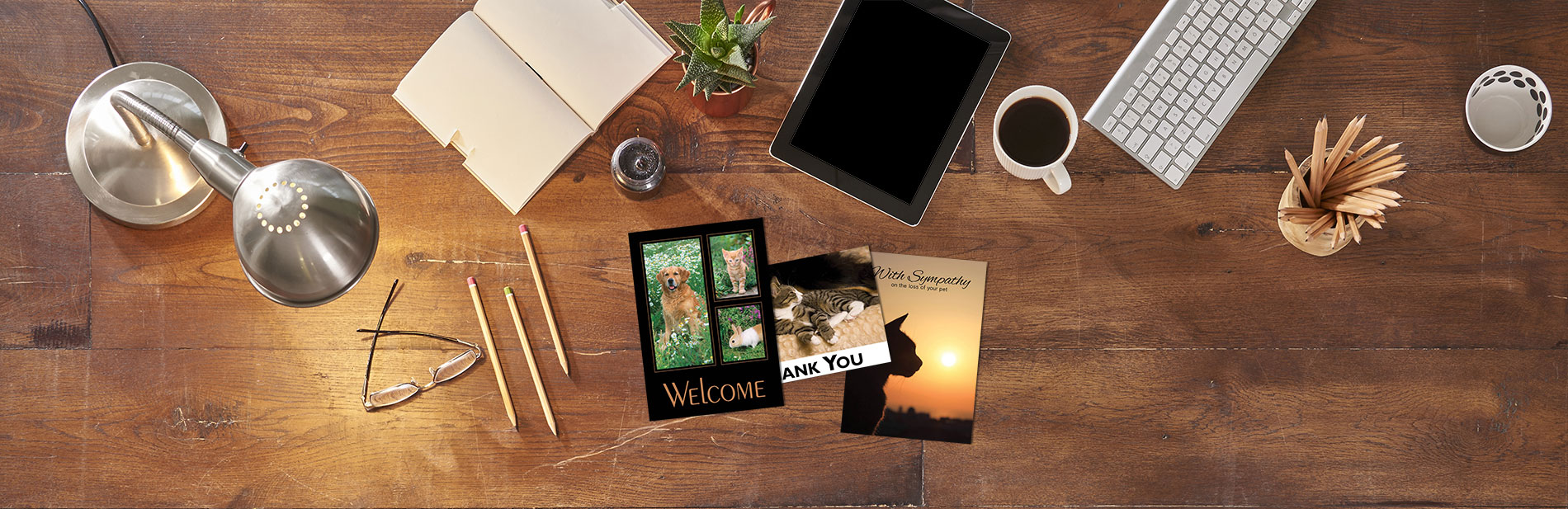 Boomerang Greetings - Welcome, Thank You, Sympathy Cards